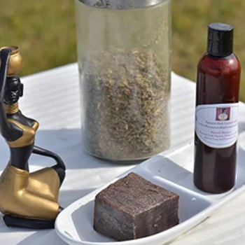 BlackOwnedBusiness ALLIES NATURAL HAIR COMMUNITY Plantain Shampoo Set